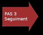 Flecha Pas 4